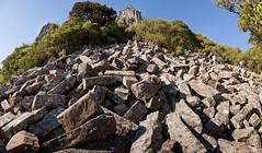 nature walks - # 13 (Lester Ralph Blair) Tags: newzealand nature rocks southisland dunedin geology wilderness strangelandscape