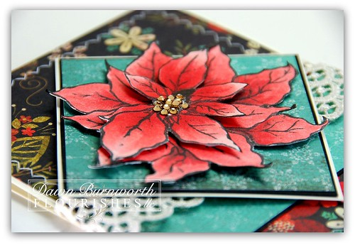 Poinsettia and Boxwood 2