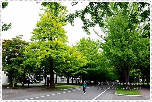 北海道大學 (18).JPG