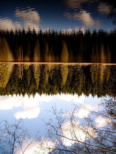 Inverted Wonder