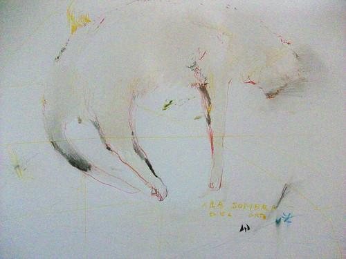 La sombra del gato by cardesin