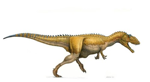 giganotosaurus running color