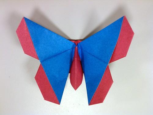 Emiko Fritillary (Butterfly)