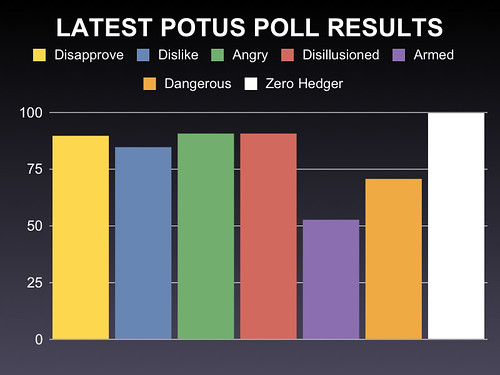 POTUS POLL HIGH RES
