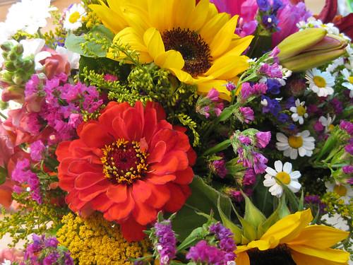 Schöne bunte Blumen