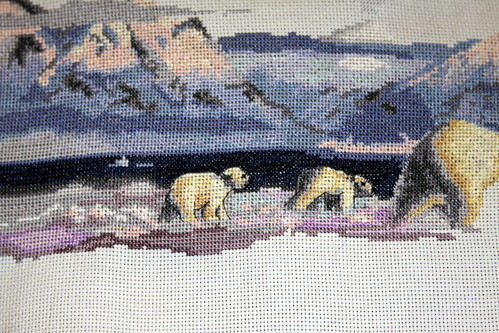 Polar Bear 9 - Detail