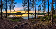 October sunset on forest pond (M.T.L Photography) Tags: landscape wideangle clouds water trees nordic horizon early color copyright night drama dramatic smooth finland suomi nikond810 nikkor1424 mtlphotography panorama