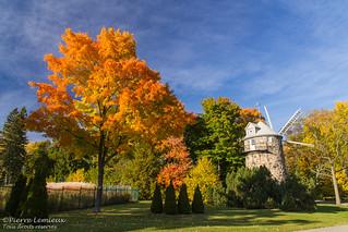 Couleurs d'automne au Parc des Moulins