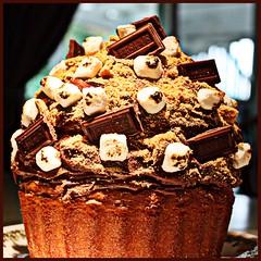 S'mores Big Top Cupcake (Sarah B in SD) Tags: cute home sweet chocolate cupcake madness marshmallow hershey smores treat bake bigtopcupcake
