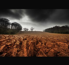 """BLOOD RED~PLOUGHED LINES"" (Wiffsmiff23) Tags: field scary darkness plough m4 lonetree ploughed topofthehill bloodred"