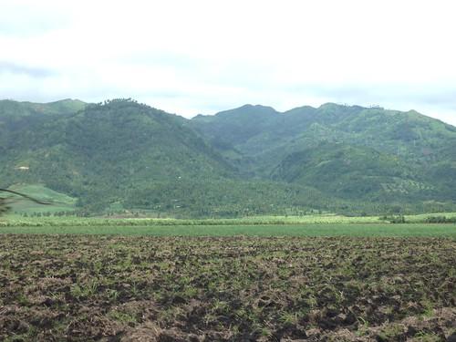 San Carlos-Dumaguete (100)