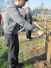 compostiere agli orti regolamentati 25