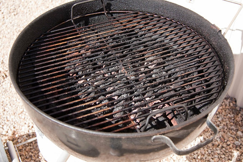 Weber's 1970 Gas Barbeque Kettle - Coals