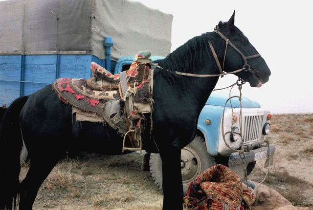 Game horse with truck