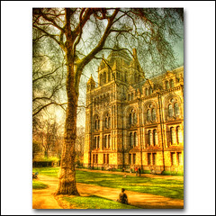 London . the Natural History museum HDR (ZedZap Photos) Tags: city travel vacation building tree london architecture landscape golden spring kensington naturalhistorymuseum hdr nationalgeographic travelphotography cromwellroad alfredwaterhouse tatot zedzap