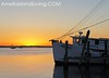 Orange Glow, Shrimp Boat on Amelia River