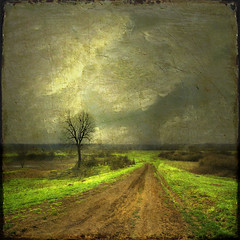 road of worn out dreams (old&timer) Tags: idream naturepoetry colorphotoaward saariysqualitypictures magicunicornverybest sbfgrandmaster kurtpeiserexcellence