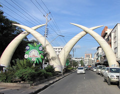 The golden white arches