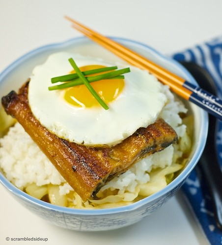 Japanese Broiled Eel Rice Bowl 02