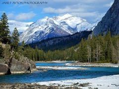 Bow River at the bottom of Bow Falls (Janet Ayton) Tags: blue trees mountain snow canada clouds river fuji bluesky alberta finepix banff fujifilm hillside sunlit fairmont bowriver bowfalls banffnationalpark allrightsreserved fairmontbanffspringshotel z5fd cans2s