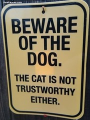 beware of the dog and the cat (sanitaryum) Tags: cute hilarious funny humorous lol win epic fail cleanhumor generallyawesome