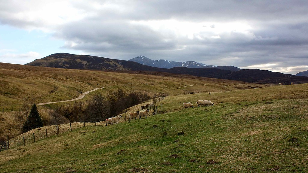 Beinn a' Ghlo from the farmland near Fealar Lodge