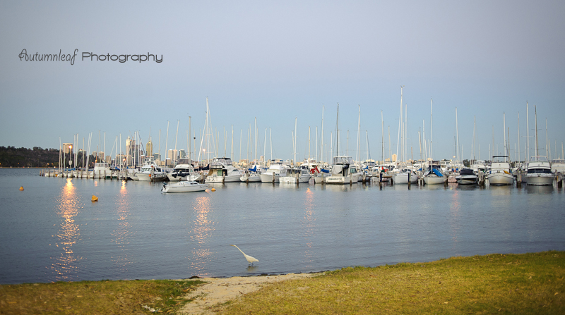 Julia & Sean's Wed - A view of the foreshore in dusk