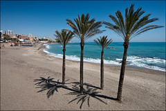 sunny beach (heavenuphere) Tags: sea tree beach landscape coast spain shadows andalucia palm espana costadelsol andalusia 1022mm gi benalmadena benalmadenacosta
