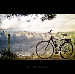 Life Is Beautiful (Emmanuel_D.Photography) Tags: mountain green bike forest trek canon losangeles high scenery view place great bicycles 5d griffithpark hybrid roadbike markii godo 7000 5dm2