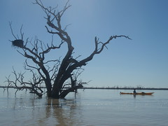 Above the Wet (AnnieRivers63) Tags: lake flood outback woolshed menindee kinchega pamamaroo
