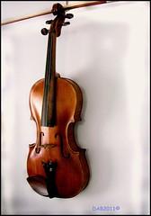 Pete's Violin