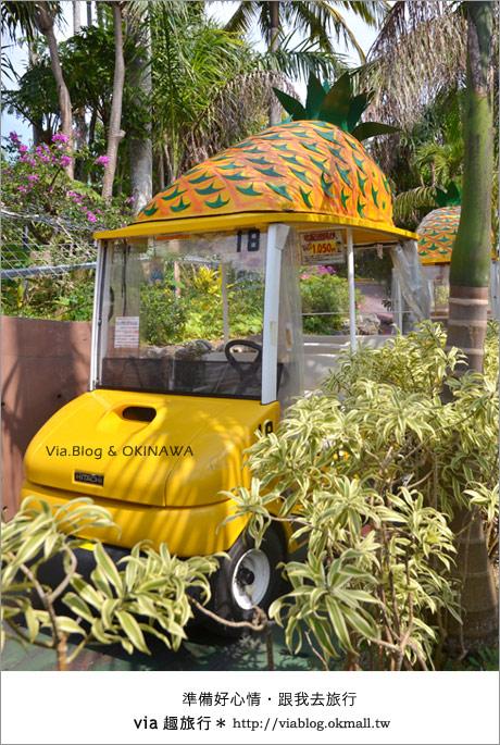 【via的沖繩旅誌】名護鳳梨公園~可愛又香甜的鳳梨樂園!7