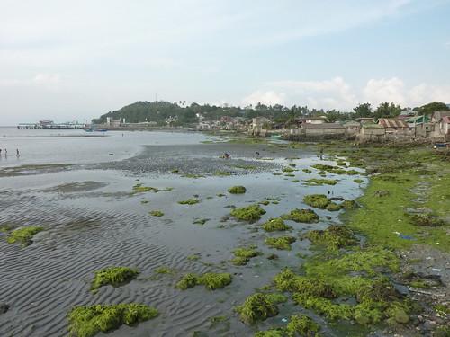 Mindoro- Calapan (4)