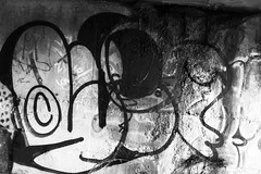 le (leguaninvasion) Tags: elephant le 89 throwup leguan 2011
