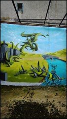 Caligr/Djalouz (SKE) Tags: urban terrain streetart art colors wall painting graffiti paint artist couleurs tag letters style spot spray painter graff mur bombing lettres graffeur photographe graphotism friche