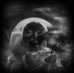 """""""Mir ist beinah, ich wre wer, der ich doch nicht mehr bin."""" - Zentralfriedhof Wien, 1. Tor, Alte Jdische Abteilung (hedbavny) Tags: blackandwhite friedhof selfportrait film me cemetery grave graveyard analog self 35mm ego myself lomo lomography doubleexposure tombstone autoretrato manipulation inversion analogue grab schwarzweiss grabstein jewishcemetery selbstportrait zentralfriedhof negativ tombe morgenstern bearbeitung jdisch jdischerfriedhof schwarzweis doppelbelichtung invertiert christianmorgenstern computermanipulation centralcemeteryvienna galgenlieder lunarisation 7galgenlieder altejdischeabteilungzentralfriedhof gallowssongs galgenbrudersfrhlingslied gallowsbrothersspringsong"""
