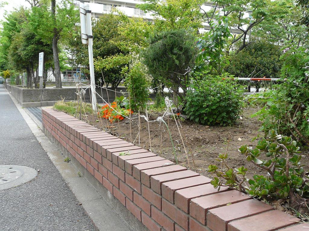 Corner Plot