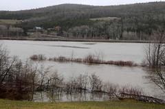 _SFP8893a_1000 (lavantage.qc.ca) Tags: rivière mitis steangèle