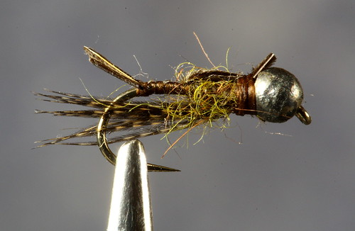 Tungsten Head Stonefly Nymph
