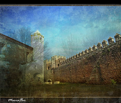 Muralha / The wall               [Explored] (Maria-Flor) Tags: castle fence towers alentejo muralha battlements ameias torredemenagem alandroal scxiii portugalmagico mygearandmesilver mygearandmeplatinum tplringexcellence merles castelodoalandroal castleofalandroal