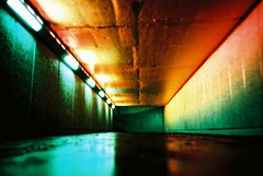 Multi coloured tunnel ratseye (25ThC) Tags: