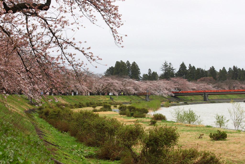 Tohoku Trip 1st day in Akita prefecture, Kakunodate (17)