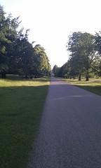 IMAG0326 (Alastair Montgomery) Tags: dog walk royal desire ripon htc studley