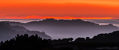 Silhouettes in the Fog (philipleemiller) Tags: landscape nature sunset silhouettedhills d800 carmel california pacificcoast coastalfog