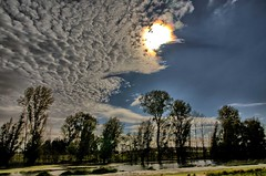 Weerfoto donderdag 6 oktober (Omroep Brabant) Tags: weerfoto weer herfst biesbosch brabant omroepbrabant