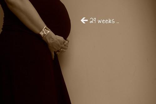 29 weeks