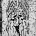 Crouching angel, hidden devil