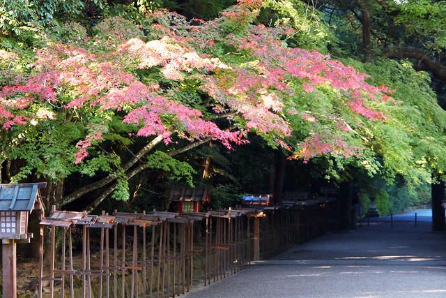 20101119_091852_石上神社