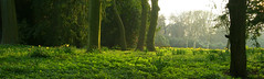 Evening sunshine (Casatigeo) Tags: statelyhome englandcountryside wortleyhall syorkshire