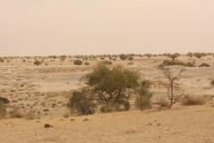 West Africa-5347